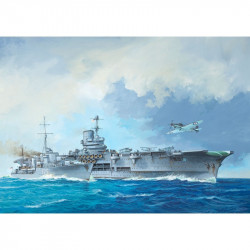 HMS Ark Royal & Tribal Class Destroyer 1:720