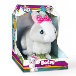 Betsy the Rabbit