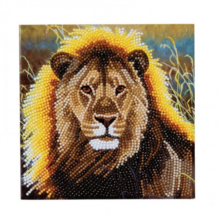 Crystal Card Kit Resting Lion